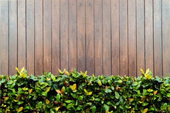 Austin Fence Installation Experts